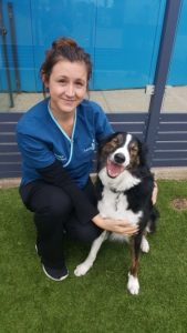 Morgan Smith Familypet Vet Seaford, Willunga