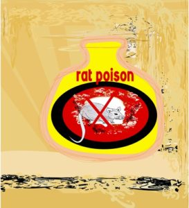 rat poison in dogs and cats